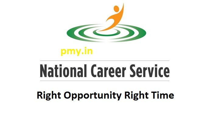 National Carrer Service