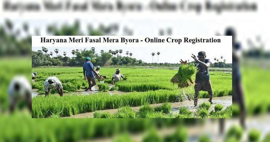 Haryana Meri Fasal Mera Byora