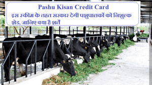 Haryana Pashu Kisan Credit Card Yojana