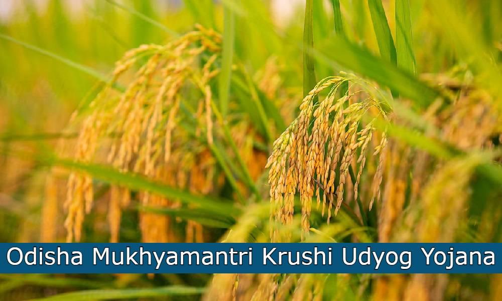 Mukhyamantri Krushi Udyog Yojana