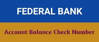 Check Federal Account Balance