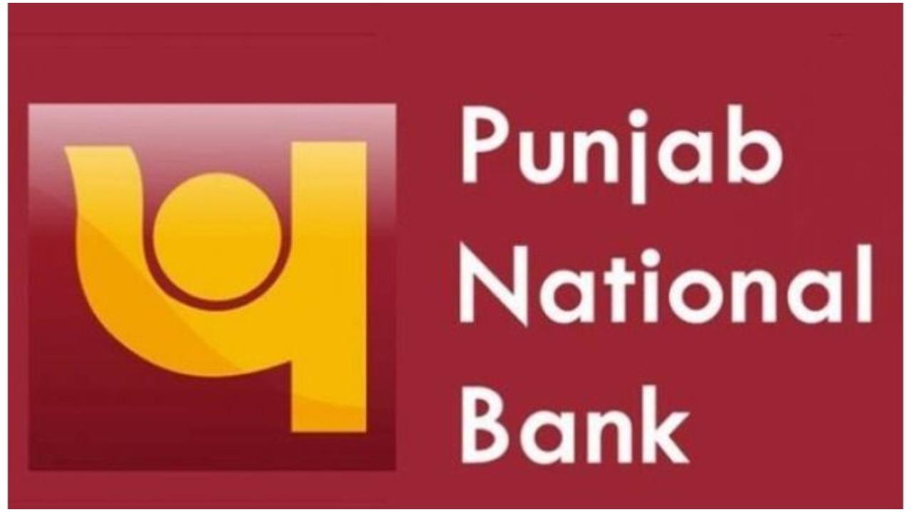 Check Punjab National Bank Account Balance